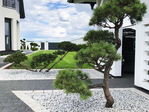zakładanie ogrodu nowoczesnego